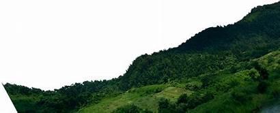 Mountains Mountain Transparent Trees Silhouette Tree Clip