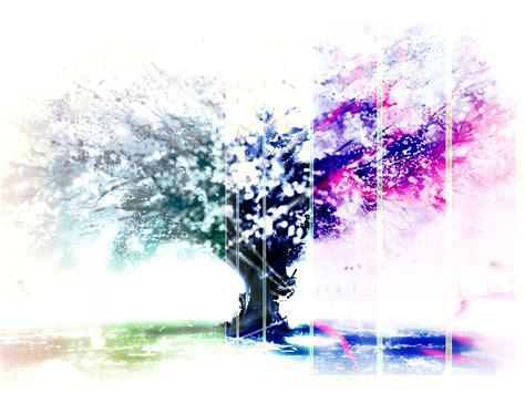 the tree of color wallpaper tree of color iphone wallpaper tree of color android