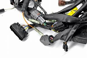 Gravely Wiring Harnes