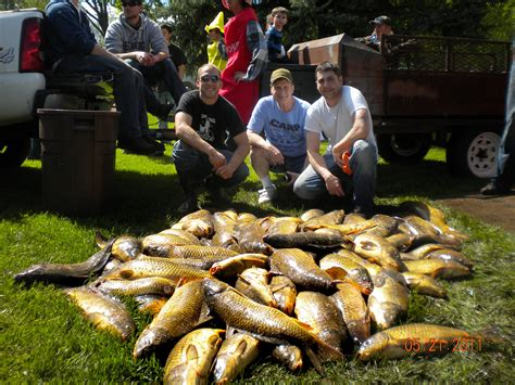 Bowfishing Boat Mn by Carp Shrinking As Mn Bowfishing Tournament Grows