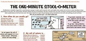 Usd To Lkr Chart The One Minute Stoolometer Is A Kind And Humorous Poster