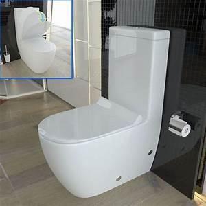 Toilette Mit Dusche : stand wc mit sp lkasten geberit sp lgarnitur keramik toilette duroplast wc sitz in 2019 stand ~ Watch28wear.com Haus und Dekorationen