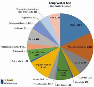 Jobs Per Drop Irrigating California Crops