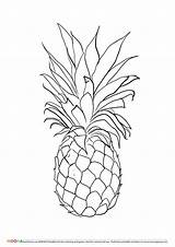Pineapple Coloring Printable Pages Drawing Pineapples Adults Tattoo Fruit Fruits Pdf Template Toddlers Preschoolers Colouring Flower Coloringe Crush Highest Outline sketch template