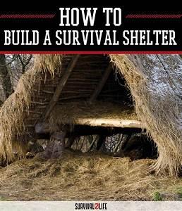 The, California, Survival, School, Survival, Shelter, Tutorial