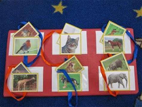 1000 images about baby animals preschool theme on 451 | 7b00a63e56bebc3970d7a55a0c98ae97