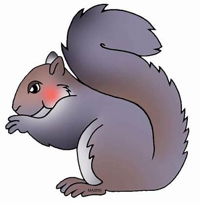 Squirrel Clipart Grey