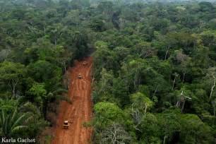 oil company breaks agreement builds big roads in yasuni