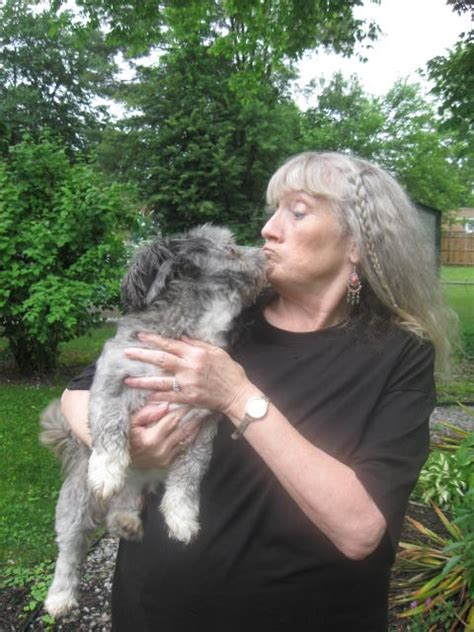 Cnbnews Net Gloucester City Pet Tips By Dawn Watson
