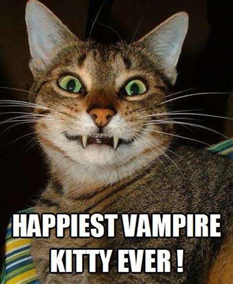 vampire kitty kittyworks