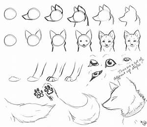 How-To-Draw Wolves Part 2 by DogWolf129 on DeviantArt