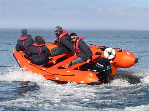 Rib Speedboat by Rent Speed Boats Jet Ski Rib Boats Fishing Boats Power