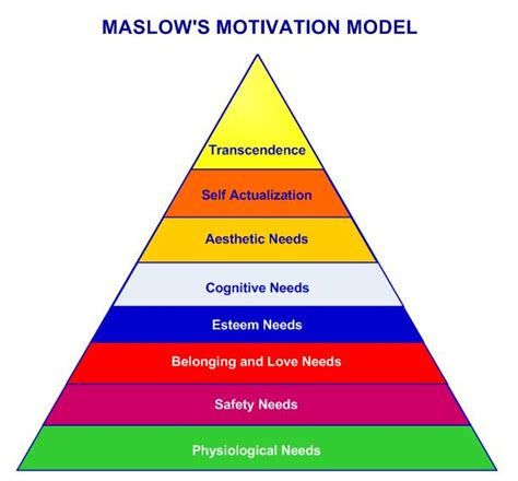 maslows hierarchy   theory  motivation