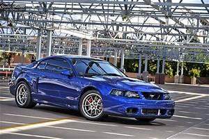 Tony Nesbitt 2003 Ford Cobra SVT Terminator Mustang | Flickr