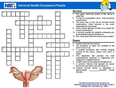 Cervical Health Crossword Clues