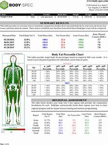 Download Example Body Fat Percentage Chart For Free