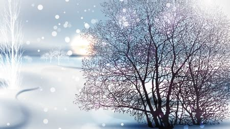 bright sunday morning winter nature background