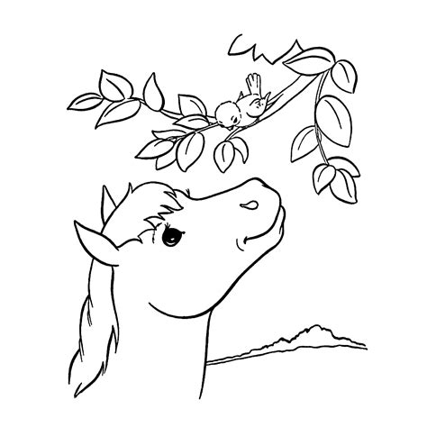 Paard van eendier vind je hoge kwaliteit paarden kleurplaten om te downloaden op deze kleurplaat paard pagina vind je mooie paarden kleurplaten voor alle paardenliefhebbers. paarden kleurplaat makkelijk - 28 afbeeldingen