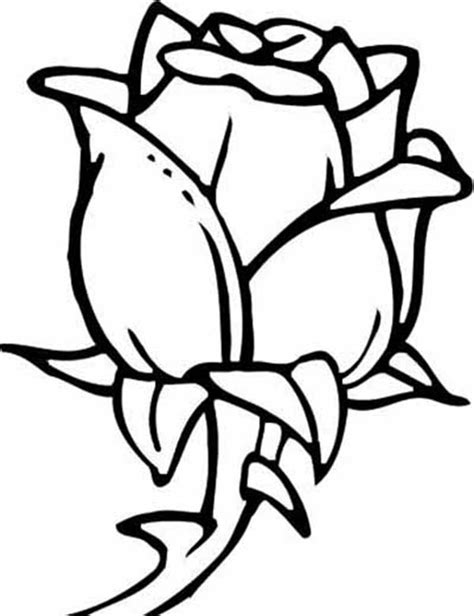 rose coloring pages bestofcoloringcom