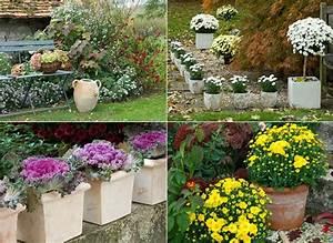 Fleur D Hiver Pour Jardinière : 8 d cors bien fleuris pour la fin de l 39 t et l 39 automne ~ Dailycaller-alerts.com Idées de Décoration