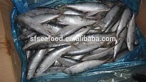 Live Sardine For Sale - Buy Sardine Packing Product on ...