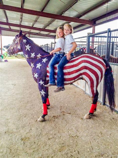 patriotic horses   county fair  quarters today