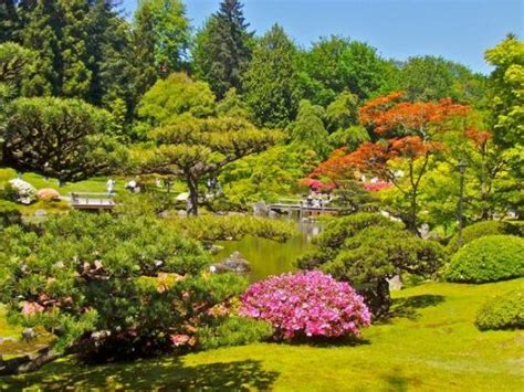 japanese garden picture of washington park arboretum
