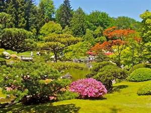 Washington Park Arboretum (Seattle): Top Tips Before You ...
