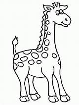 Coloring Giraffe Pages sketch template