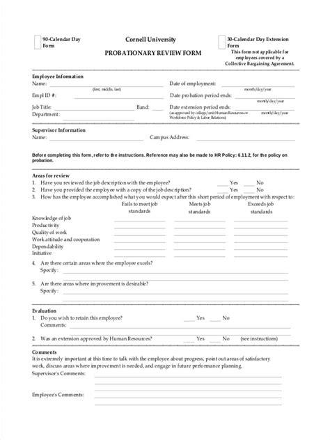 FREE 8+ Probation Review Forms in MS Word | PDF