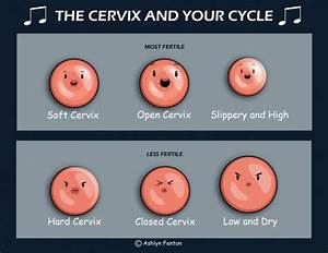 Incompetent Cervix: Everything You Need to Know