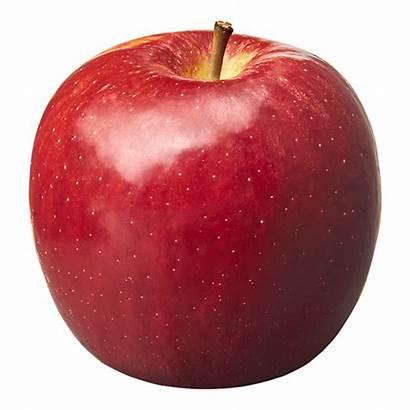 Crisp Cosmic Apples Variety Apple Teacher Varieties