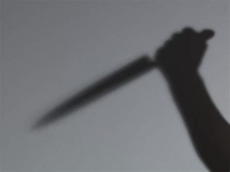 LAW GRADUATE STABS BROTHER TO DEATH Home - Crimefighters