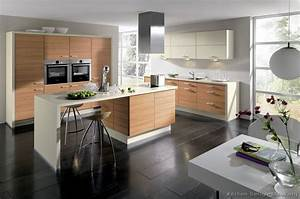 Pictures of kitchens modern light wood kitchen for Photos de cuisines
