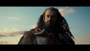 Thorin Oakenshield - The Hobbit: The Desolation of Smaug ...