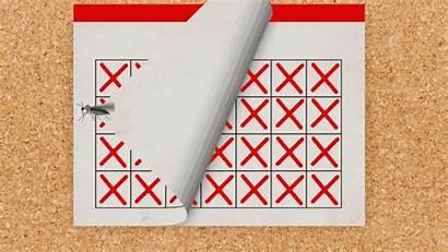 Days Calendar Heartburn Cramps Zika Lasts Since