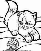 Grumpy Cat Cartoon Drawing Coloring Pages Getdrawings sketch template