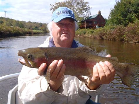 Pa Fish And Boat Delayed Harvest by Tuckasegee River Guided Fly Fishing Trips Hookers Fly