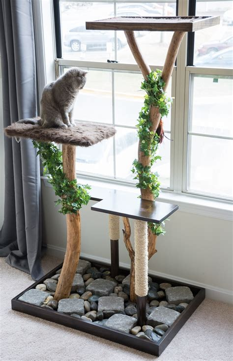 Free Diy Furniture Plans How Make A Cat Tree Using Real Branches My Amazing Diy Cat Tree
