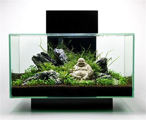 Aquascape Tank For Sale by Top 10 Best Fish Tanks August 2017 Review Picks