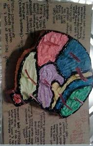 Brain Cake  Made For School Project C