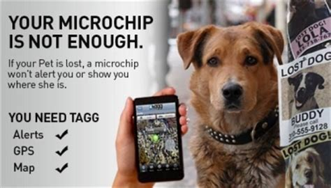 microchip  gps tracking  dogs economical home