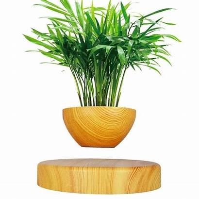 Plant Levitating Floating Magnetic Pot Bonsai Air