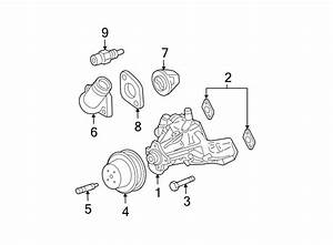 Gmc V2500 Suburban Engine Water Pump Backing Plate Gasket