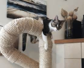 cat climbers sisal cat climbers from catastrophicreations