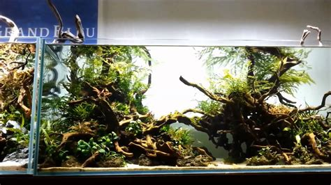 Aquascape Wood by Aquascape Grand Wood