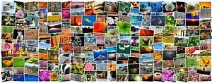 Fotos Als Collage : was sind collage programme netzsieger ~ Markanthonyermac.com Haus und Dekorationen