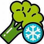 Vegetable Icon Icons