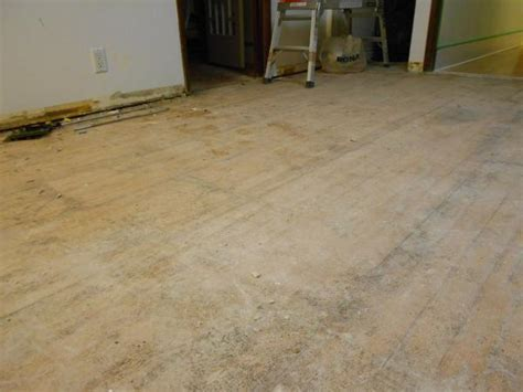 WonderBoard Backerboard and Self leveling underlayment