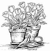 Kresby Omalovanky Znamky Digi Latky Pyrografie Vzory Malby Tužkou Spring Summer sketch template